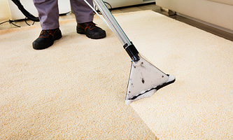 Rug and Carpet Cleaning in South Jersey